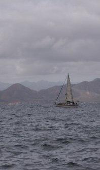 Sail Boat Main