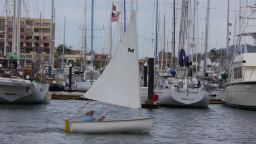 Dinghy Sailor 2