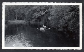 The lazy flow of the river made for easy rowing among the overhanging branches