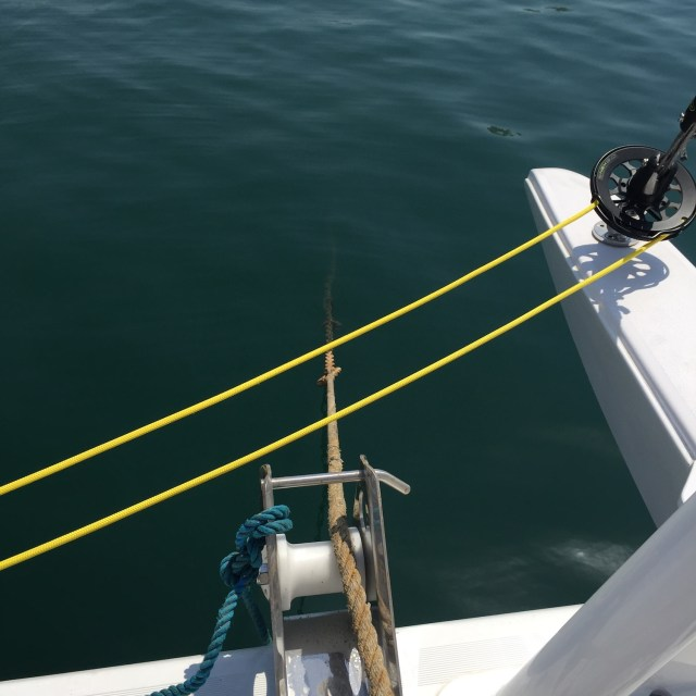 Bow mooring line after attachment