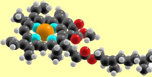 Model Molekul Klorofil Magnesium berwarna oranye; nitrogen biru; oksigen merah; karbon abu-abu gelap; dan hidrogen ringan berwarna abu-abu.
