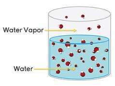 Hukum Raoult Tentang Larutan dan Gas