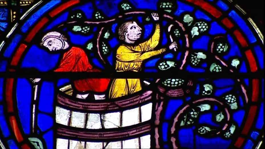 Vendanges - Vitrail de Chartres