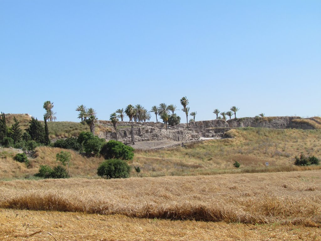 Le tell Megiddo
