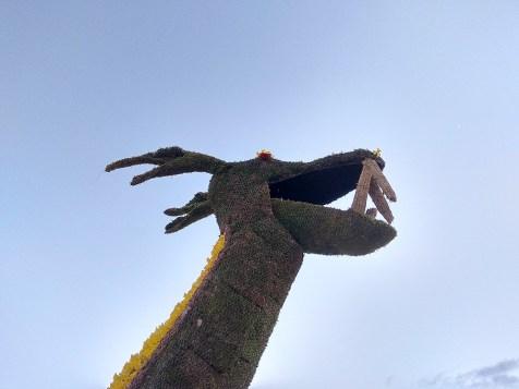 Dragon_ENR_Fête_Jonquilles (1)