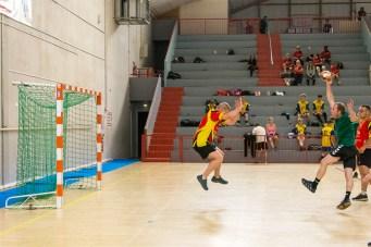 Tournoi_Entreprises_SDV_Handball (3)