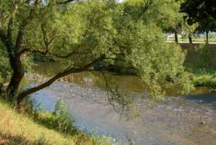 secheresse Meurthe Saint dié (3)