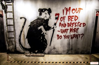 462037-the-world-of-banksy-experience-immersive-a-l-espace-lafayette-drouot-les-photo-2
