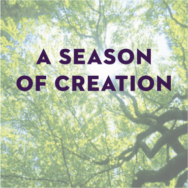 A Season of Creation