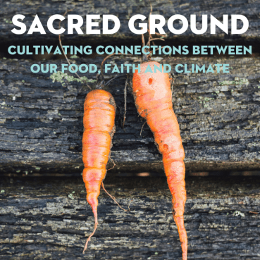 Sacred Ground: Cultivating Connections Between Our Food, Faith and Climate