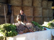Réalisation d'un étal sur une vente à la ferme
