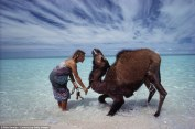 After National Geographic was published in 1978, many referred to Robyn Davidson as 'The Camel Lady.' She was also the inspiration behind a painting of the same name by Jean Burke