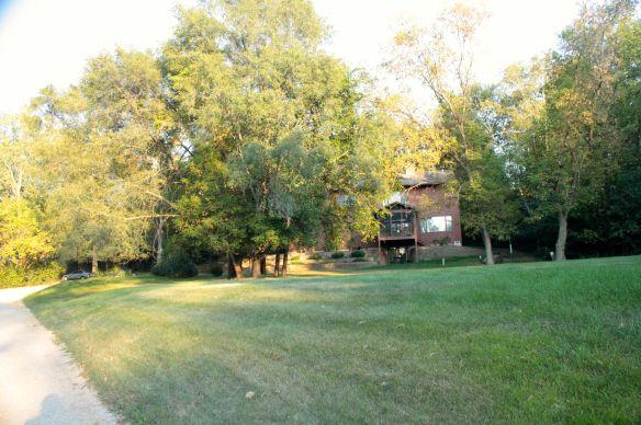The P back yard