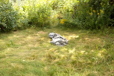 The blanket and matted down grass are among the signs of homeless people I saw  while exploring.