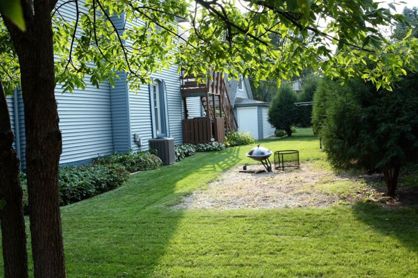 Landscaping on the north side of the house.
