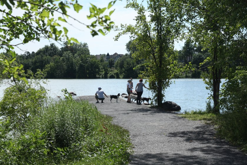 Hiking is popular among dogs and their humans. This peninsula, called Duck Point, is on the eastern side of Como Lake.
