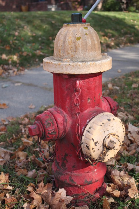 This old hydrant at the corner of Cleveland and Dayton Avenues is likely from the mid-1940s.