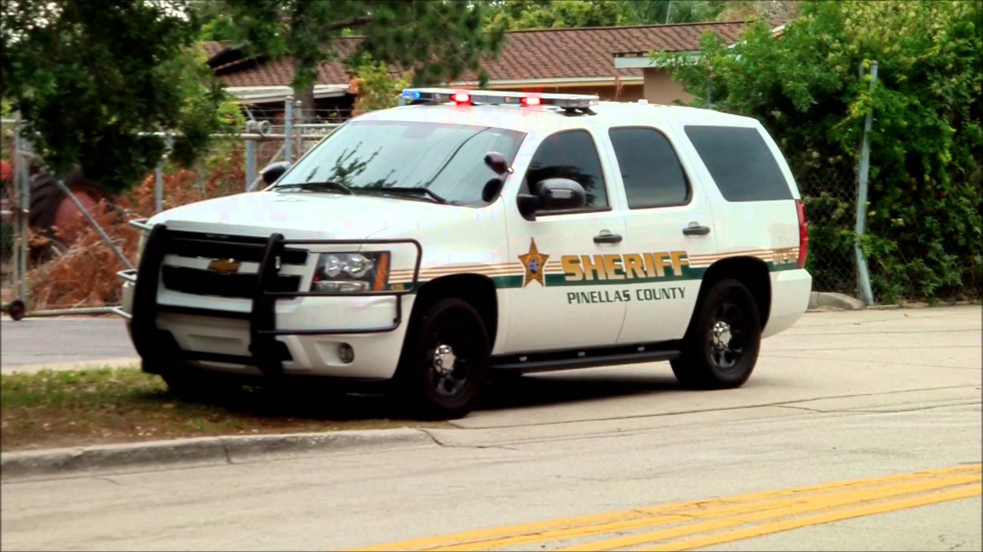 Horse race begins for Pinellas Sheriff, property appraiser