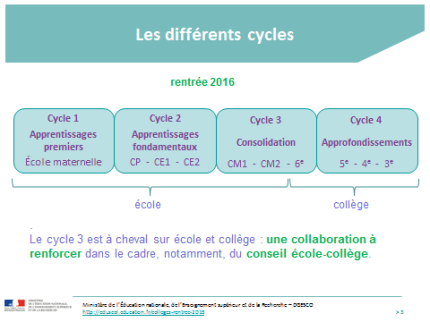 Cycle_3.1