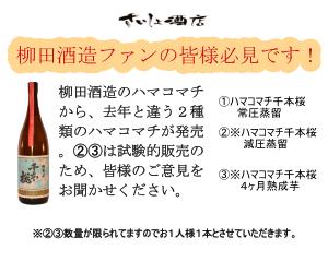 柳田酒造ハマコマチ