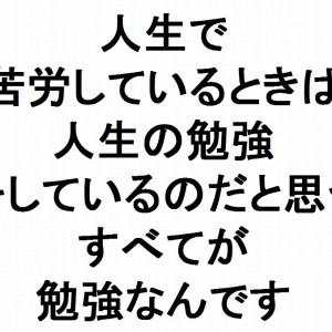 人生で苦労しているときは人生の勉強をしているのだと思うすべてが勉強なんです斎藤一人 あなたが変わる315の言葉334