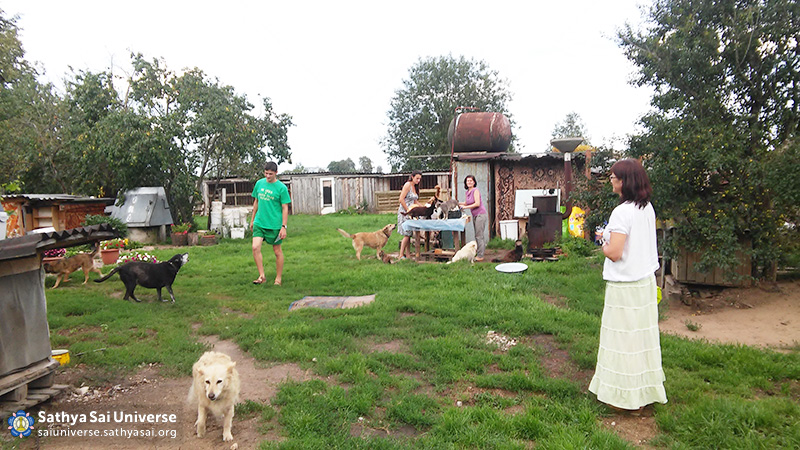 2016-07-31-8z-belarus-serve-the-planet-cleaning-at-the-shelter