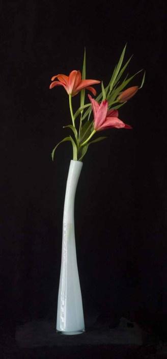 braiden_blossoms-New Blue Vase