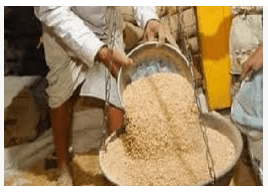 Appointment of 11 teams to investigate ration grains,
