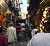 A rickshaw ride through Chandni Chawk Markets was both exhilarating and terrifying. As you pass through the narrow streets, you notice that there are hundreds of electrical wires strung across all the shop fronts, to which you're so close that you can touch their sidewalk displays, and you barely bypass the goats and cows who share the same pedestrian thoroughfare. If this experience doesn't remind you of every Middle Eastern suq (old market) then it means you've never been to the Middle East! I think the Lebanese Ministry of Tourism should get onto utilizing rickshaws.