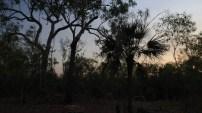 Dernière nuit en Australie pour Delph