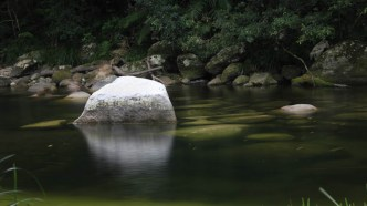 Mossman Gorges