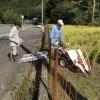 天理滝本からの報告Ⅲ  稲刈り  669