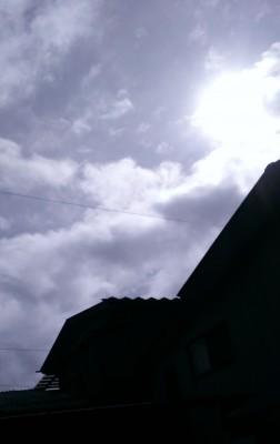 しょっちゅう顔を合わせるお日様ですが、台風の後に差し込む日差しのなんと心強いことでしょう。