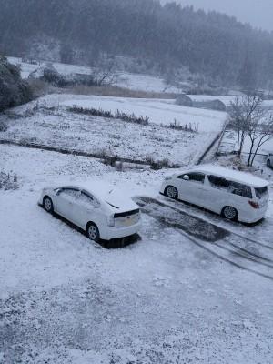 今朝の様子。この時が一番振ってた頃です。今は表面だけが雪で接地面は水、と言った感じのところが多いですし、路面に雪はありません。