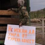 протест животновъди (7)