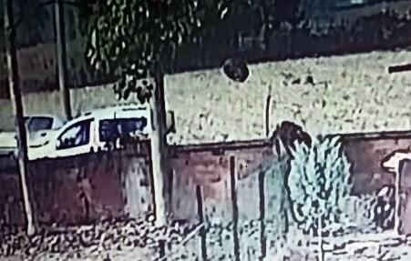 İki otomobilin kafa kafaya çarpışması sonucu 3 kişinin yaralandığı kaza kamerada