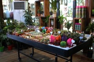 Bahçem satış merkezinin açılışı yapılıyor