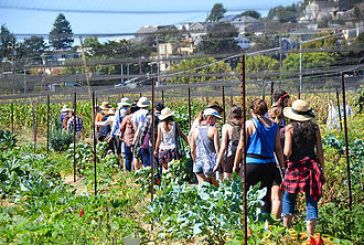 Occupy The Farm is an Occupy Success Story