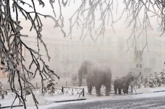 Мамонты в тумане 2 место Попов Иннокентий