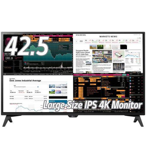 LGエレクトロニクス(LG Electronics) 43UD79-B