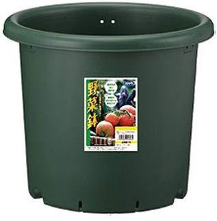 アップルウェアー(appleware) 野菜鉢 27型 グリーン