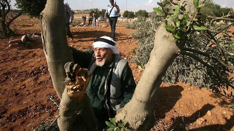 people of palestine