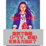 ストロベリーナイトを動画を無料で視聴する方法!竹内結子主演ドラマ映画を公式サイトでフルで見れる!