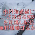 市川海老蔵にござりまする2021見逃し配信や再放送を視聴する方法!