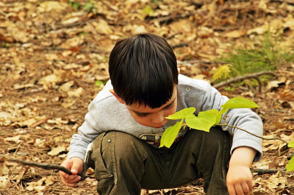 ילד חוקר את הסביבה