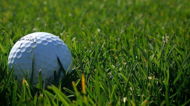 Golf Green Ball Golfer Sport Club  - mlopezdesign / Pixabay