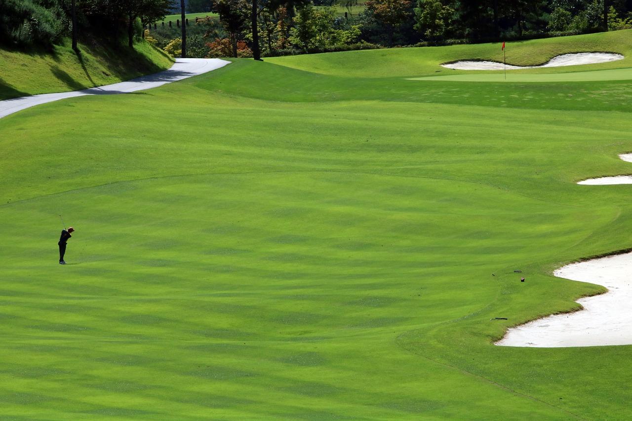 Golf Green Field Grass Sport  - HeungSoon / Pixabay