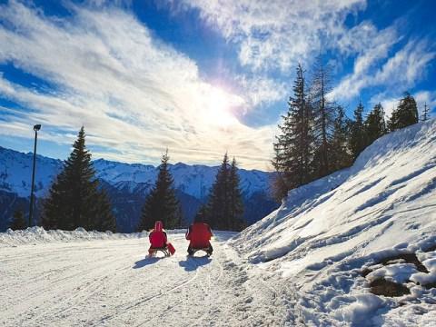 Sled Austria Meadow Mountaineering  - Ri_Ya / Pixabay