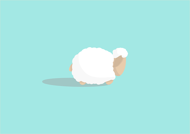 Sheep Animal Livestock Mammal Wool  - cromaconceptovisual / Pixabay