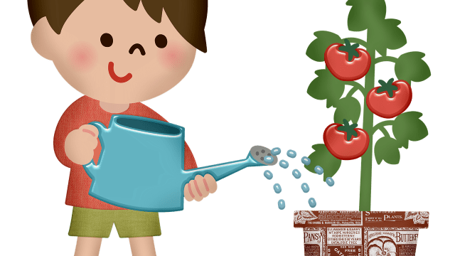 Boy Watering Plant Watering Can  - 7089643 / Pixabay